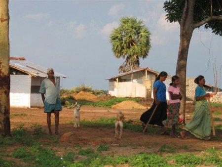 landless people's kilinochchi (1)
